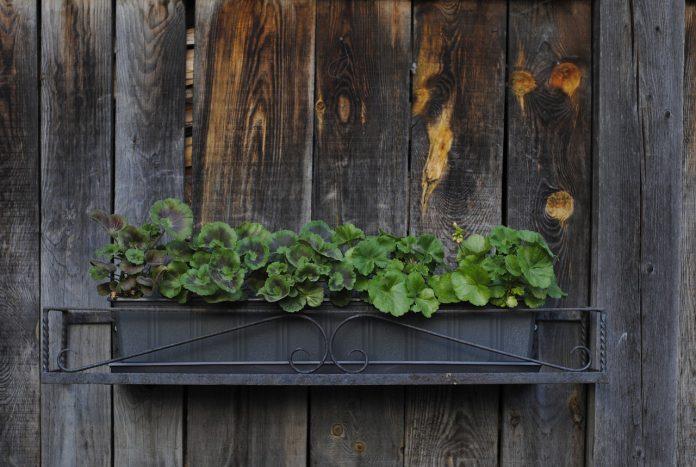 Bac à fleurs en bois